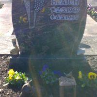 Friedhof-Altbulach-Blaich